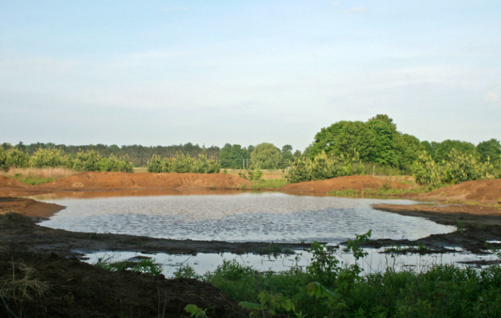 One of the Boothbys' ALUS projects consists of a dug-out wetland, which they now maintain as habitat for numerous amphibian and reptile species, as well as birds.